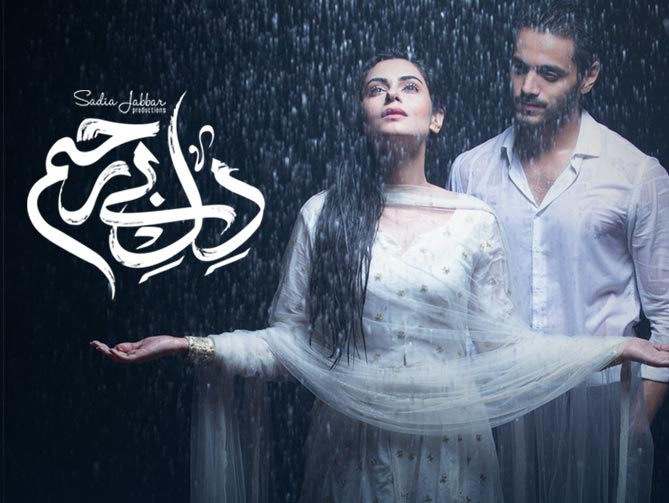 Watch Dil e Bereham Episode 15