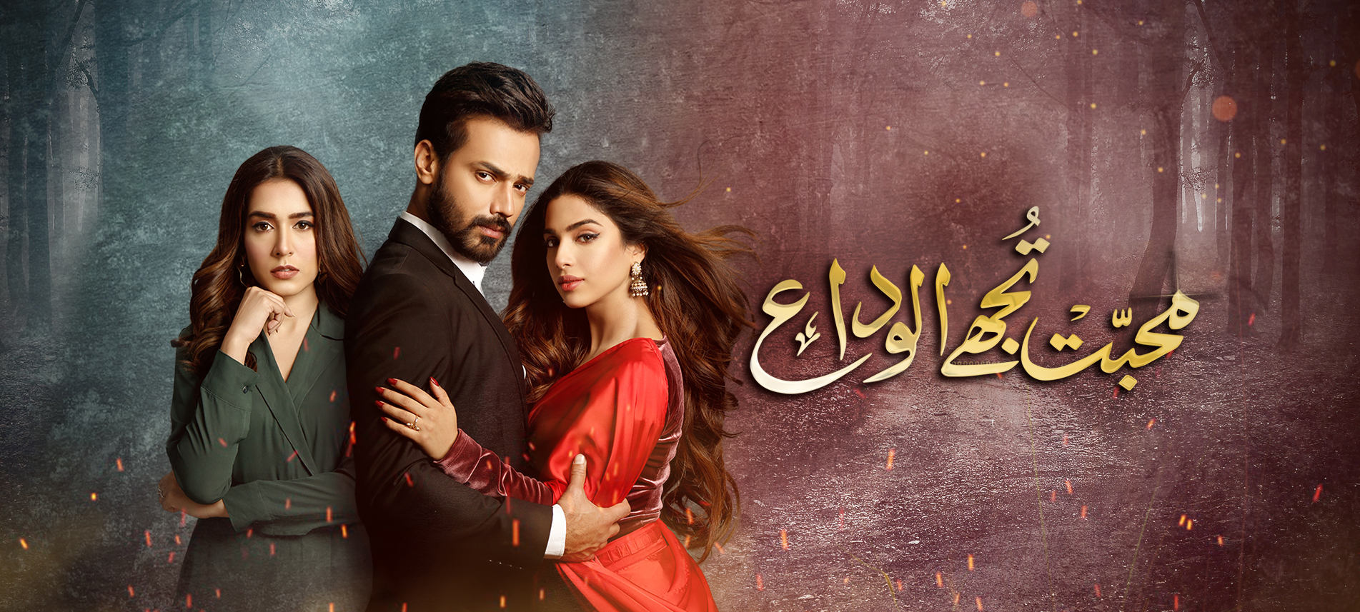 Watch Mohabbat Tujhe Alvida Episode 31 Hum Tv Drama 13th January 2021