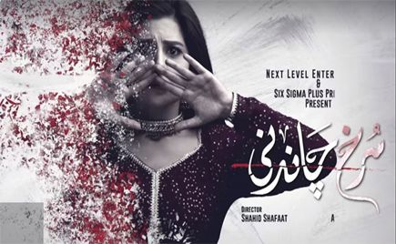 Watch Surkh Chandni Episode 2